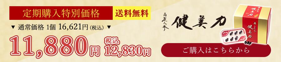 定期購入特別価格 送料無料 高麗人参 健美力 11,880円 ご購入はこちらから