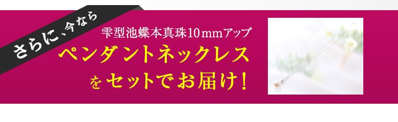 大珠 9~10.5mm 池蝶本真珠4点セット